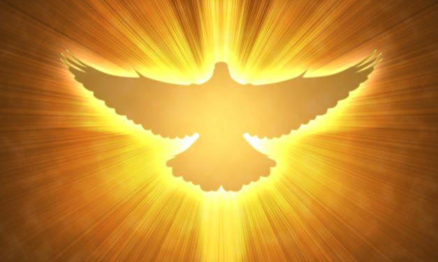 الروح القدس مؤهل الخدمة