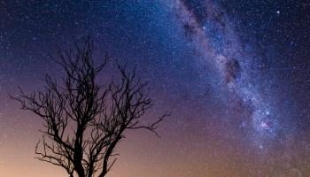 دراسة كتابية عن نبوات الخروج وأيوب واشعياء وإرتباطهم بالصوم الكبير