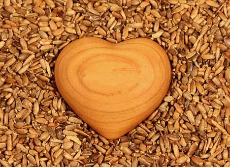 القلب الاسرائيلي الذي يؤتمن على مشيئة الله – الصوم الكبير