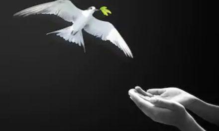 마음: 성령님의 일하심