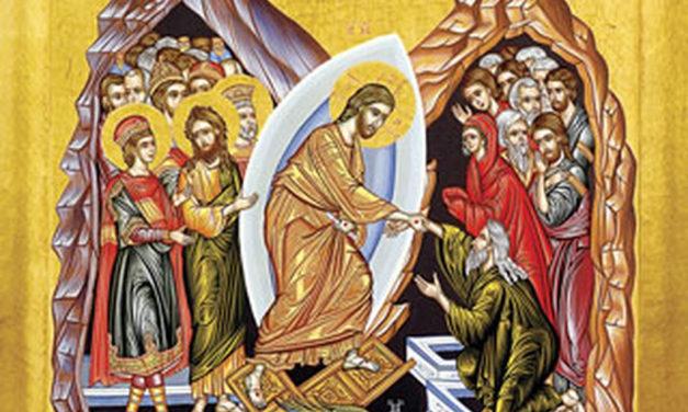 القيامة والبشارة
