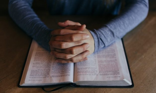 سفر العدد – دراسة كتابية